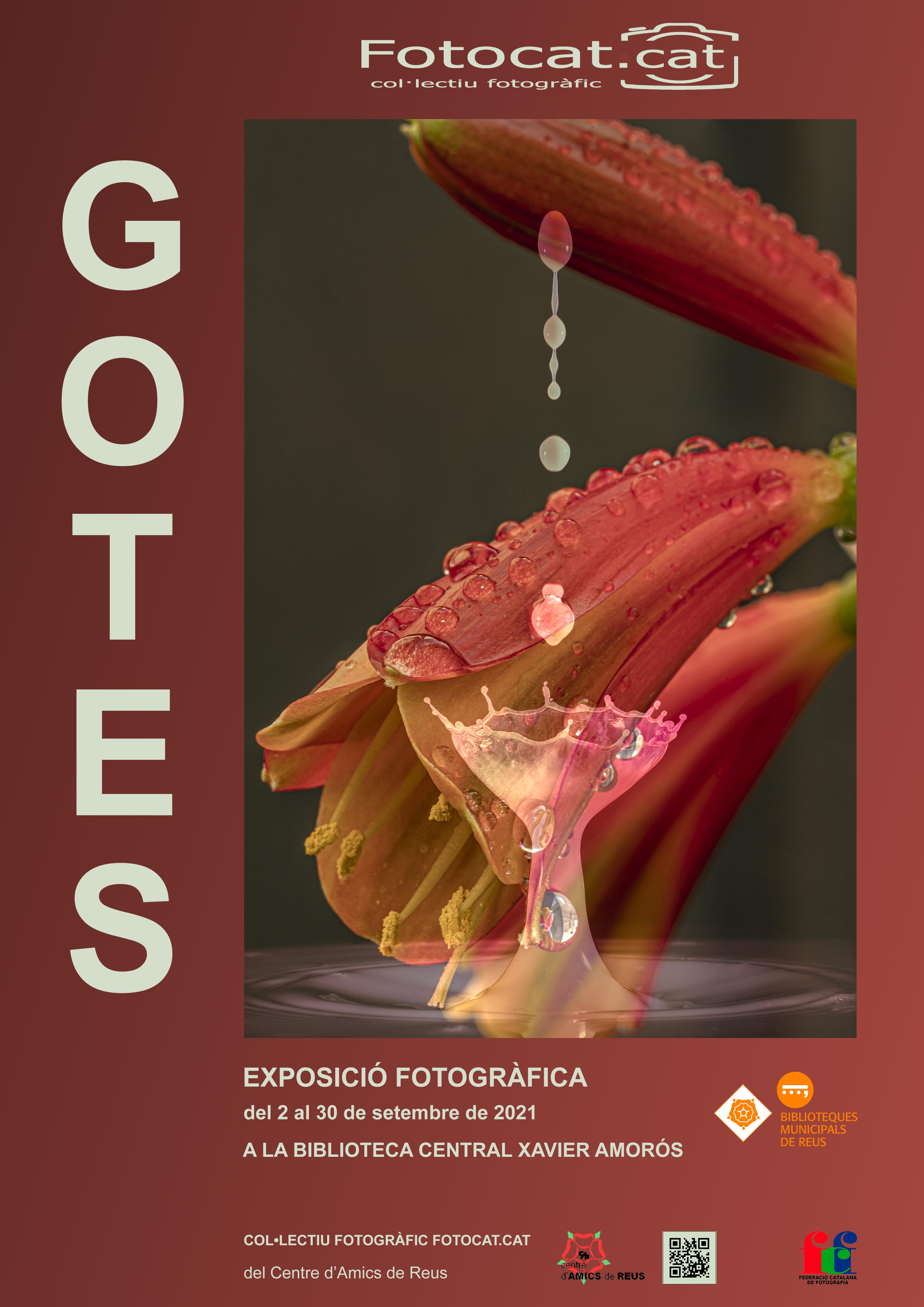 Imatge de l'agenda Gotes